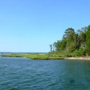 Burton Island Study
