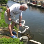 Fenwick Island Oyster Gardener, Buzz Henifin, tends his oysters.