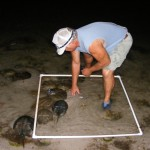 The annual Inland Bay Horseshoe Crab Survey is one of the citizen science volunteer projects at the CIB.  To volunteer for the 2011 Survey, contact Sally Boswell at outre@inlandbays.org or call 226-8105