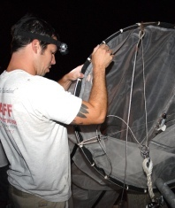 Ingress of larval fishes through Indian River Inlet: patterns of abundance and development of a Juvenile Fish Index to assess water quality in the Inland Bays system.