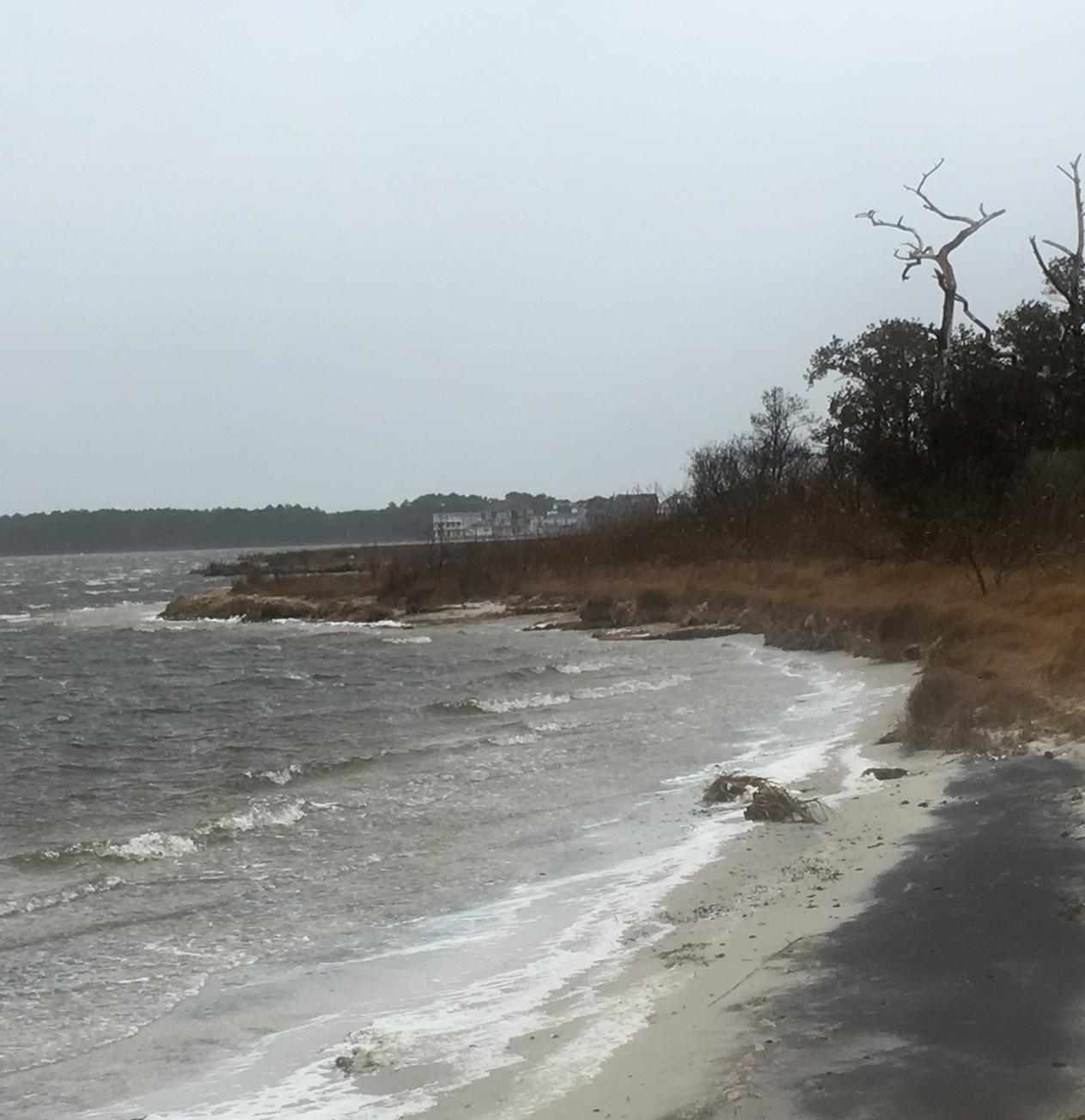 Nor'easter vs. Coastal Delaware