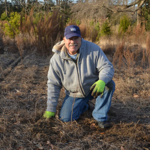 Volunteers Wanted for Reforestation Tree Plantings  at Angola Neck and Bullseye-Ferry Landing Preserves