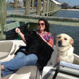 Boat with dogs