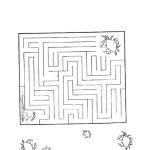 Crabby Maze