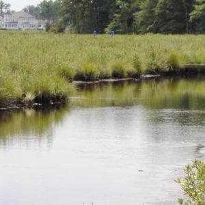 Dirickson Creek
