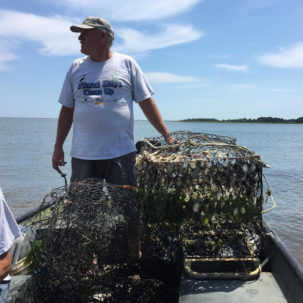 Fight Trash Pollution in the Inland Bays on June 9th