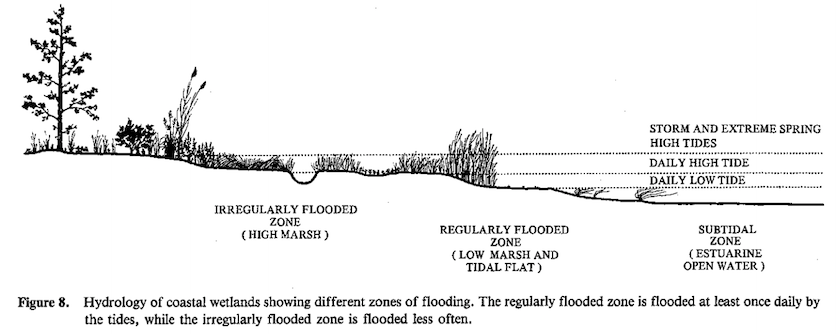 High Marsh Diagram