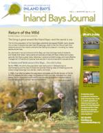 I.B.  Journal  Fall '15