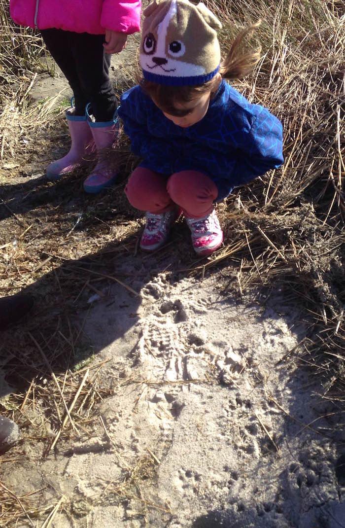 kids_animaltracksatjamesfarm_brittanyspics