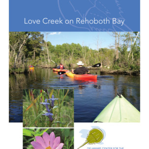CIB Offering State of Love Creek Report Presentations to Interested Homeowners Associations and Civic Groups