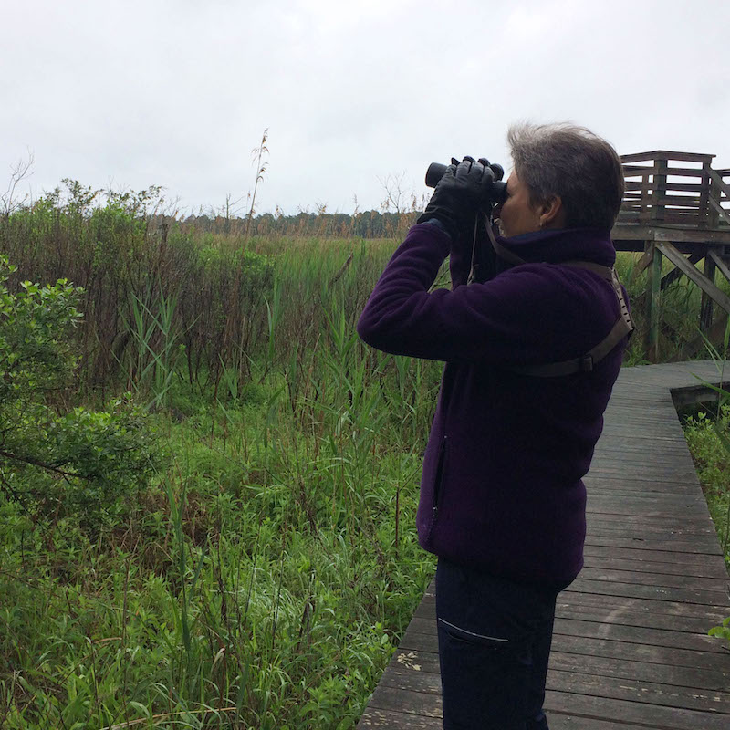 Birding the James Farm: Check it off your list!