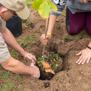 Planting Trees: Simple, Sustainable, and Significant to our Watershed