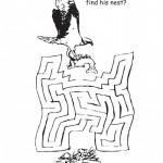 Osprey Maze