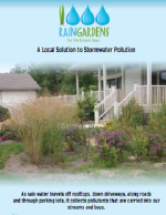 Rain Gardens for the Bays