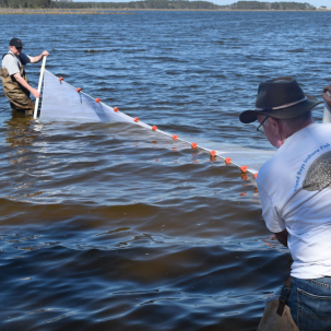 Center for the Inland Bays Seeks Volunteers for Annual Fish Survey