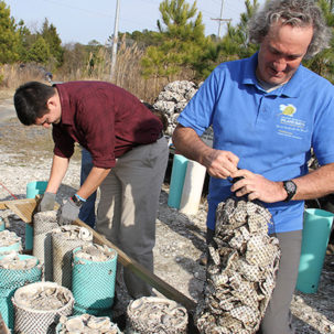 Local Restaurant Shell Recycling Program Aims to Expand in 2018