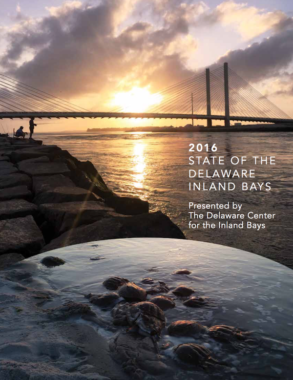 2016 State of the Inland Bays