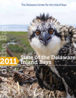 State of the Bays '11 ('16 Edition Coming Soon!)