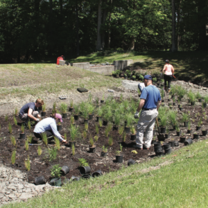 Stockley Center Stormwater Dry Pond Retrofit Project