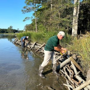 Sussex County Nonprofits Partner on Delaware's Latest Living Shoreline