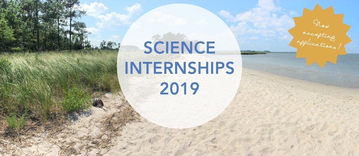 Website-Header_-Science-Internships-2019-1