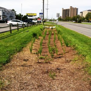 Anchorage Canal Drainage Area Stormwater Retrofit