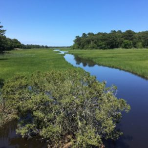 Center from the Inland Bays Seeks Feedback on Plan to Manage the Inland Bays